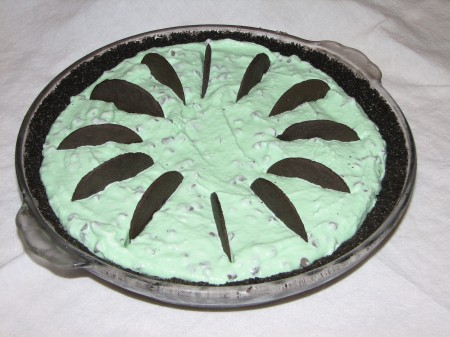 Mint chocolate chip ice cream pie